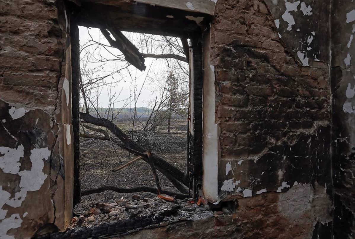 Näkymä palaneesta talosta Lubyankan kylässä, noin 25 kilometrin päässä Tshernobylin ydinvoimalasta.