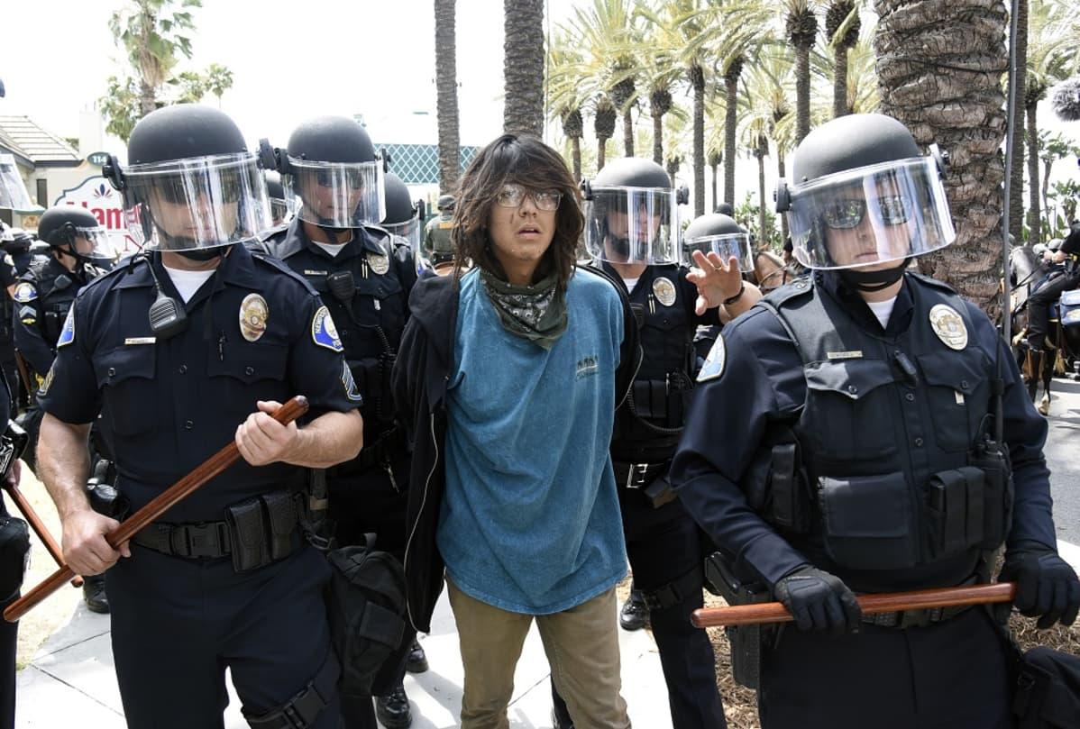 Poliisit ja mielenosoittaja