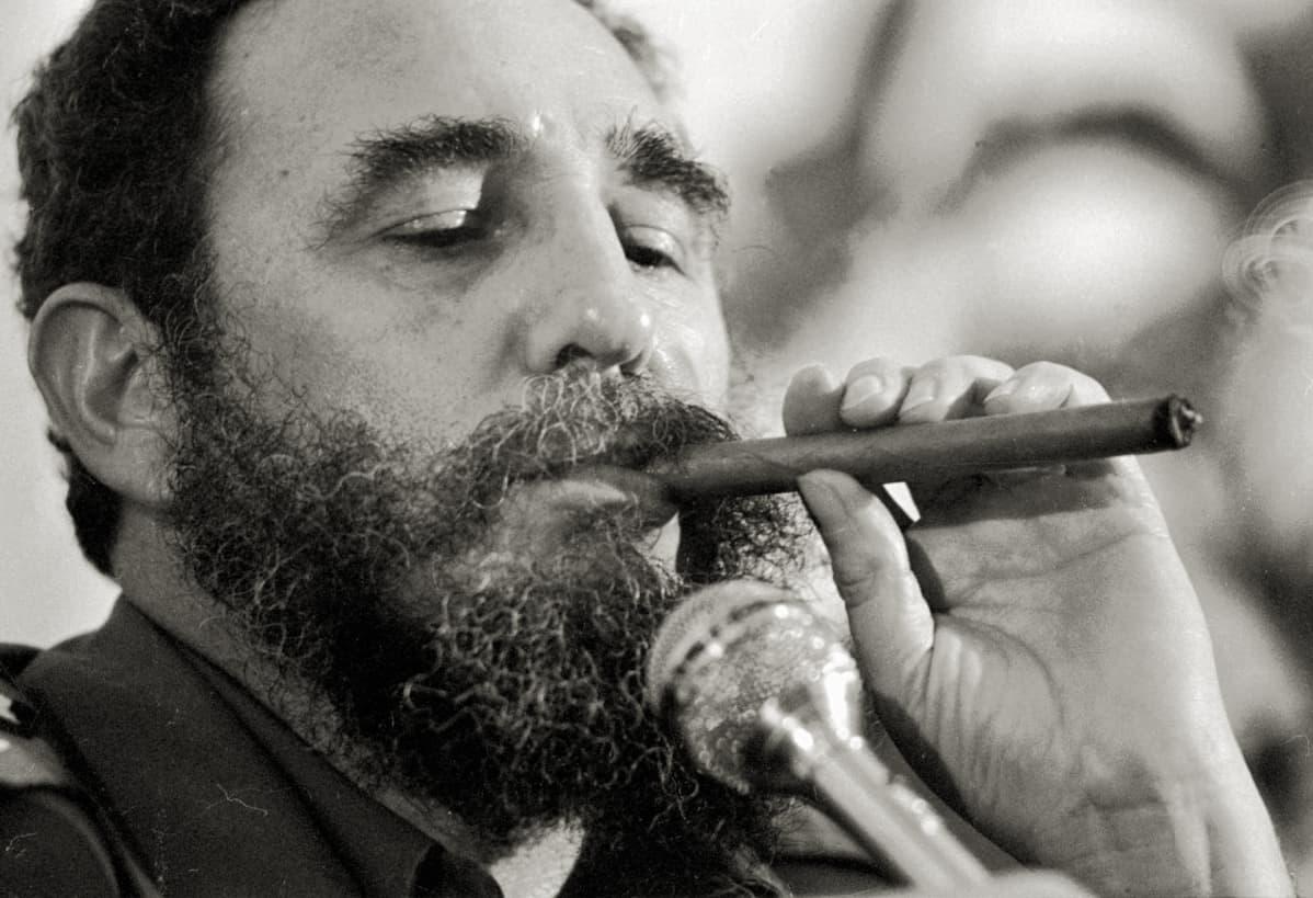 Fidel Castro polttaa sikaaria vuonna 1978.