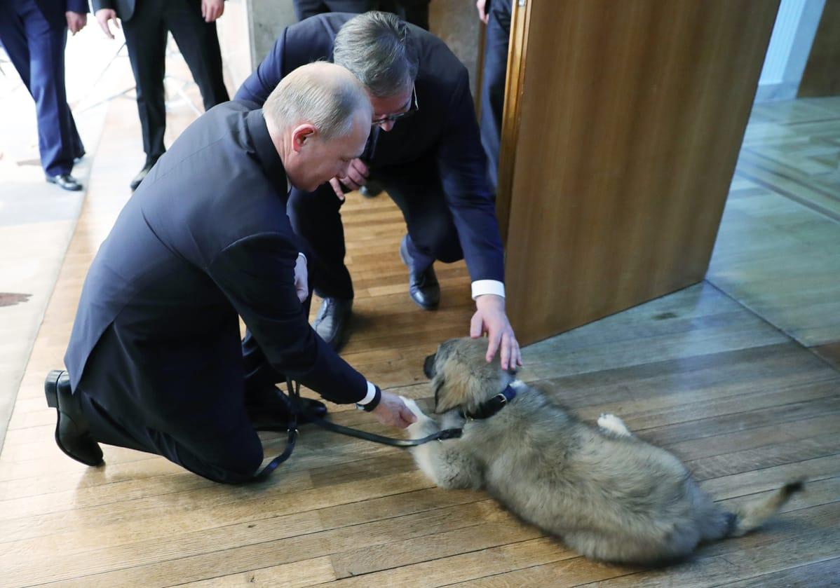 Päämiehet koiran kanssa.