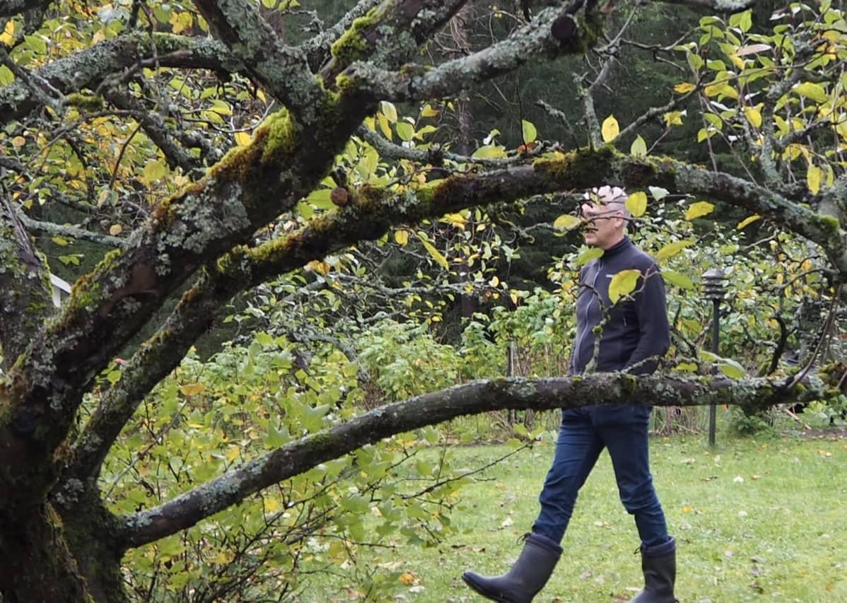 Markus Ukkonen kävelemässä omenapuun takana.