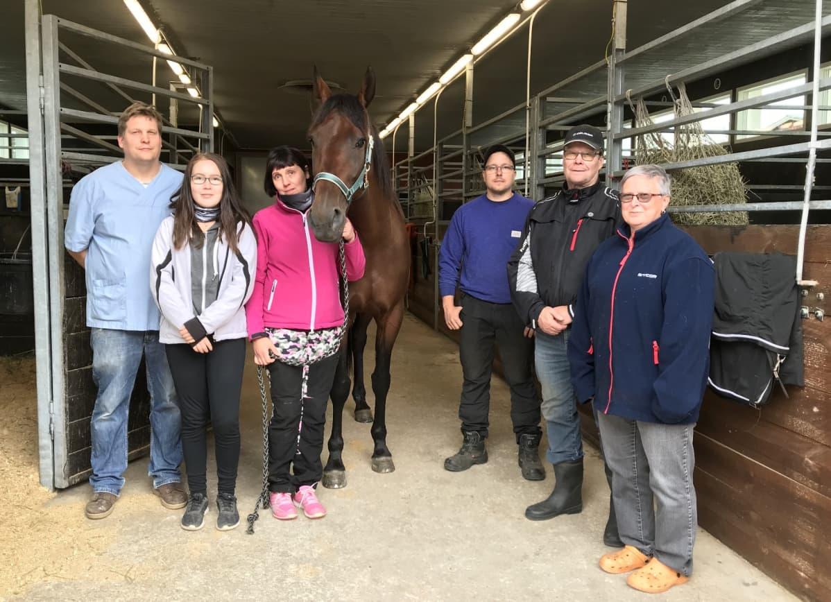 Ranch Kellyn taustajoukot kokoontuivat kesällä sankarin ympärille - eläinlääkäri Antti Tukiainen, hoitaja Heidi Konga, Anne Luttinen, kengittäjä Simo Ikonen sekä kotitallin isäntäväki Seppo Torniainen ja Liisa Torniainen.