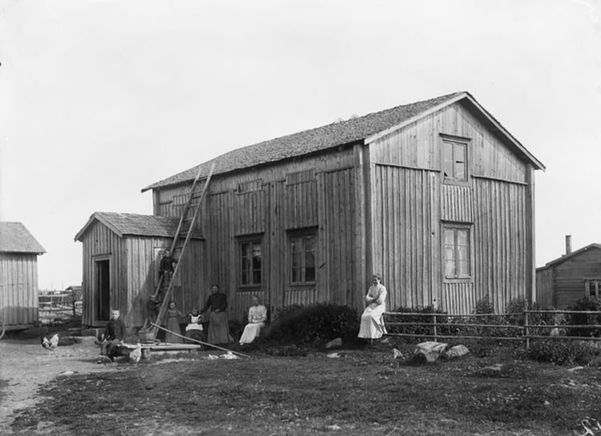 talo pellolla