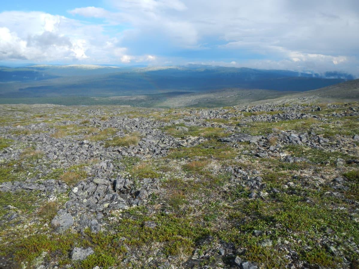 Kivien muodostamia kuviomaita Urho Kekkosen kansallispuistossa.