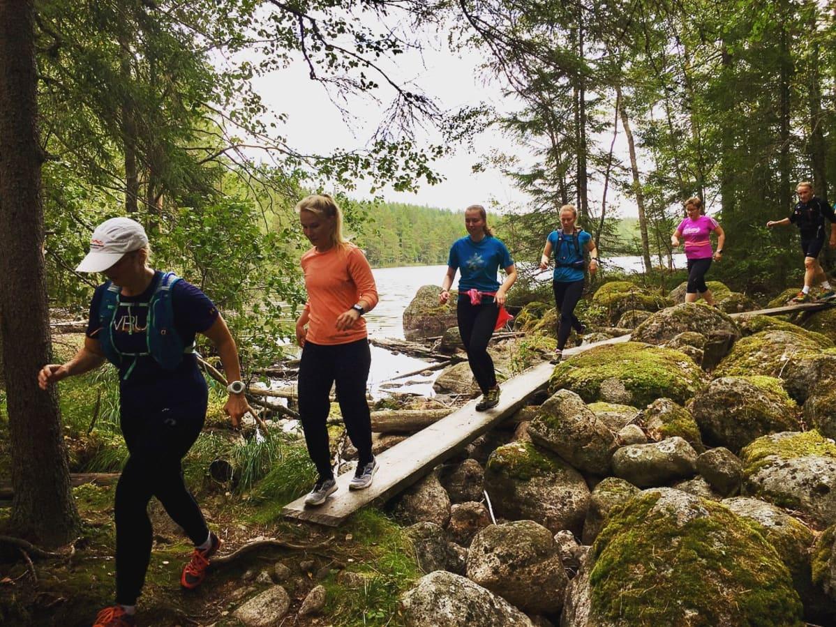 Polkujuoksijoita Repoveden kansallispuistossa