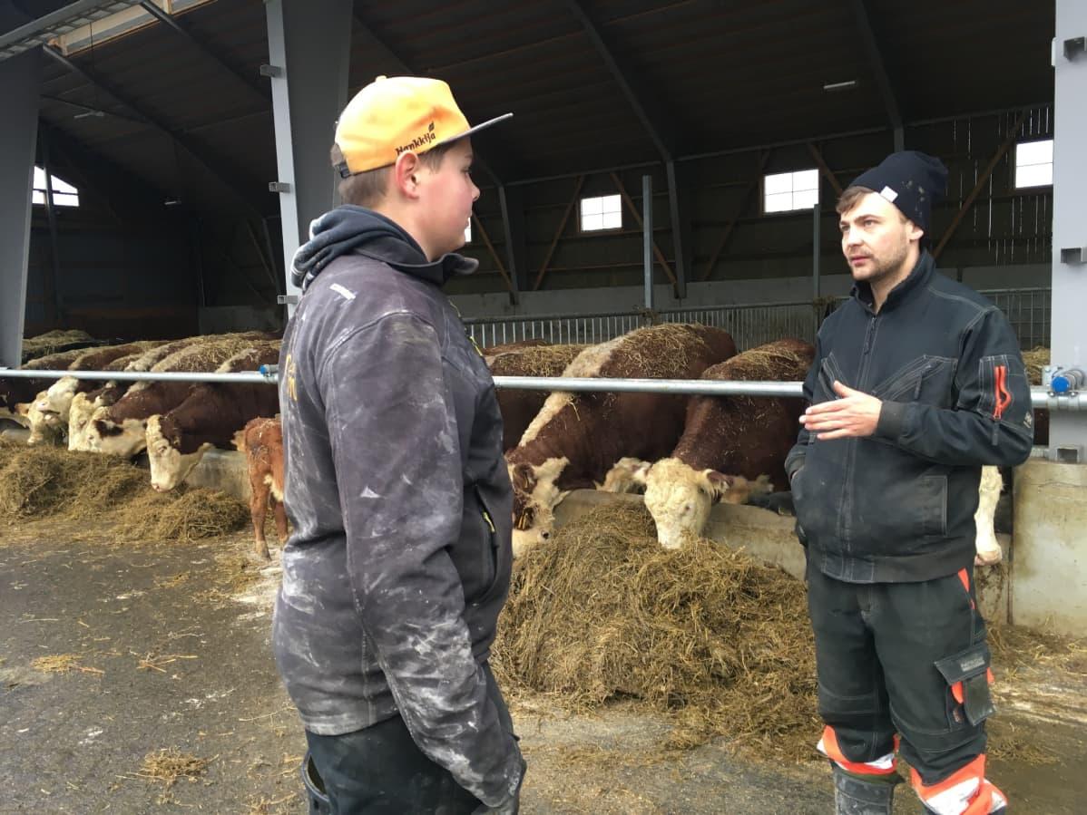 Kouvolalainen maanviljelijä Tommi Hasu ohjeistaa tilallaan TET-harjoittelussa olevaa Teemu Tommiskaa.