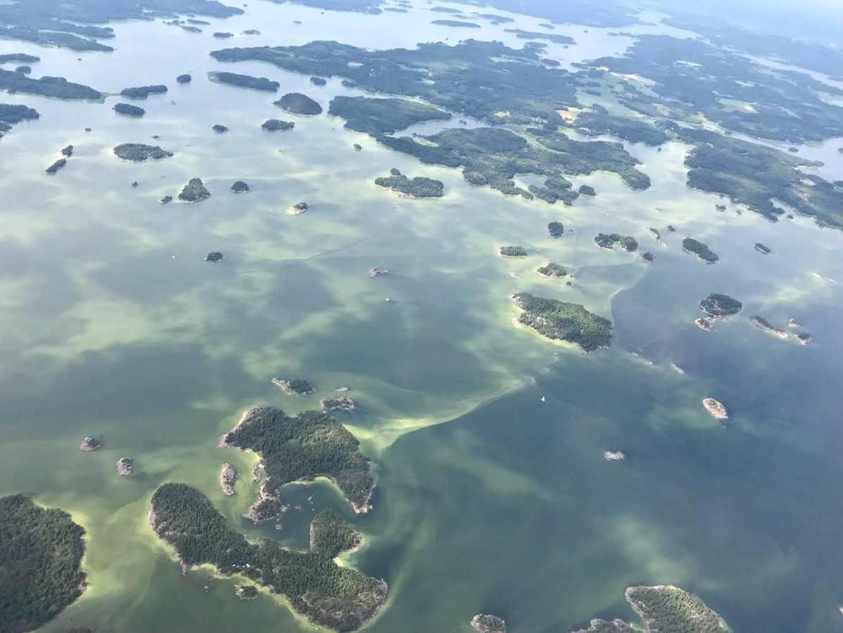 Sinilevää Porvoon saaristossa heinäkuussa 2018.