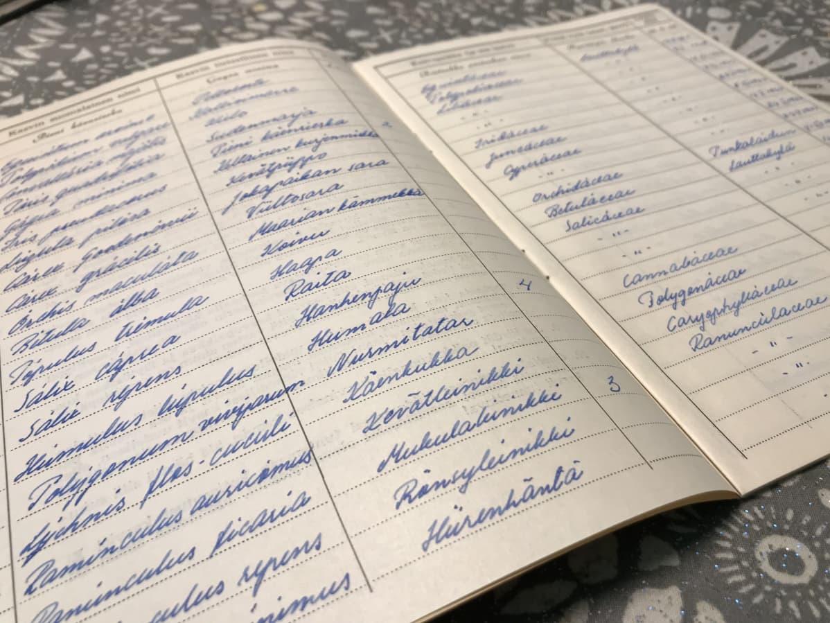 Kasvioon kuului myös kasvistopäiväkirja, johon merkittiin löydetyn kasvin tieteellinen nimi, suomenkielinen nimi, kasvisuku, löytöpaikka ja ajankohta. Koivisto on kirjoittanut tekstit huolellisella käsialalla.
