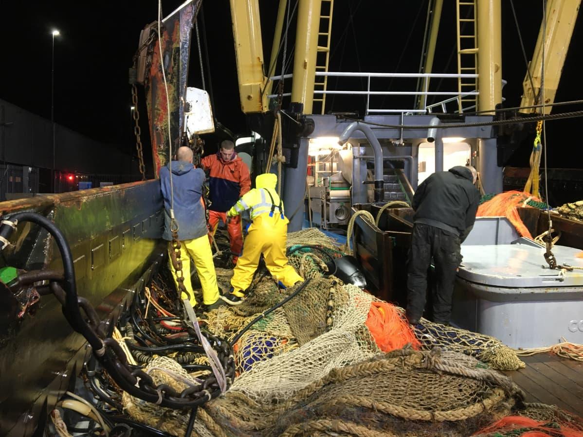 Kalastusalus, kalaa