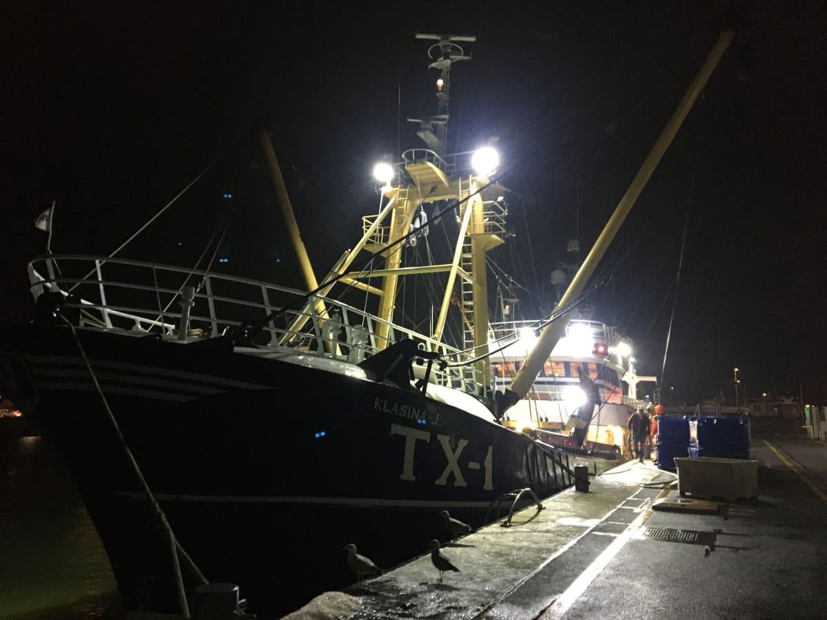 Kalastusalus Den Helderissä aamuyöllä.