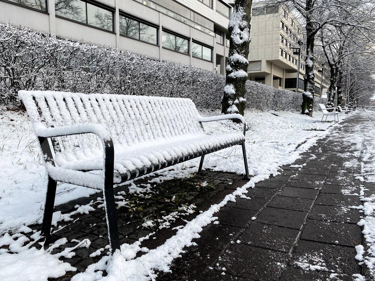 Aurajoen rannalla lumen peittämä puistonpenkki.