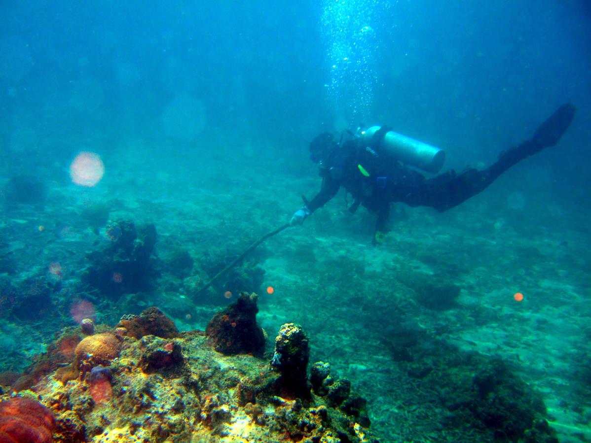Opiskelija Filippiinien yliopistosta tutustuu koralliriuttojen suojeluun 2008.