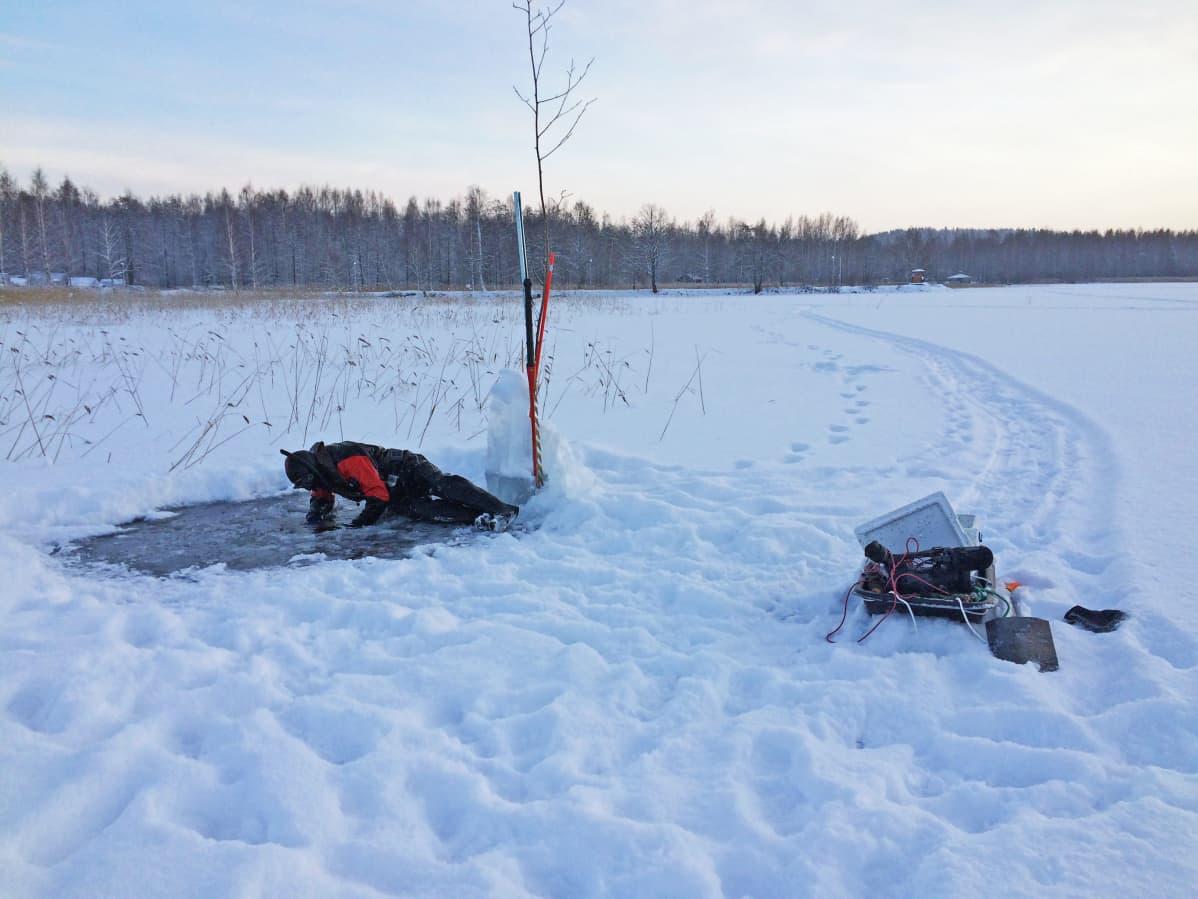 Asikkala Vesijärvi Teemu Lakka sukelllusvalokuvaus
