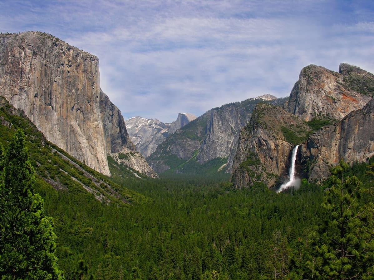 Näkymä Yosemiten kansallispuistoon, Yhdysvaltain Kaliforniassa.