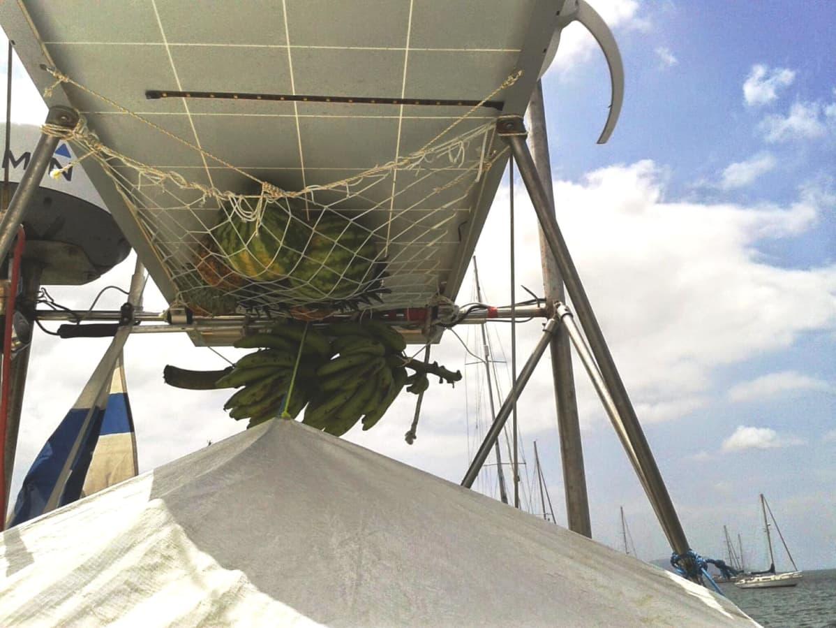 Vesimeloneja ja banaaniterttuja ripustettuna purjeveneessä
