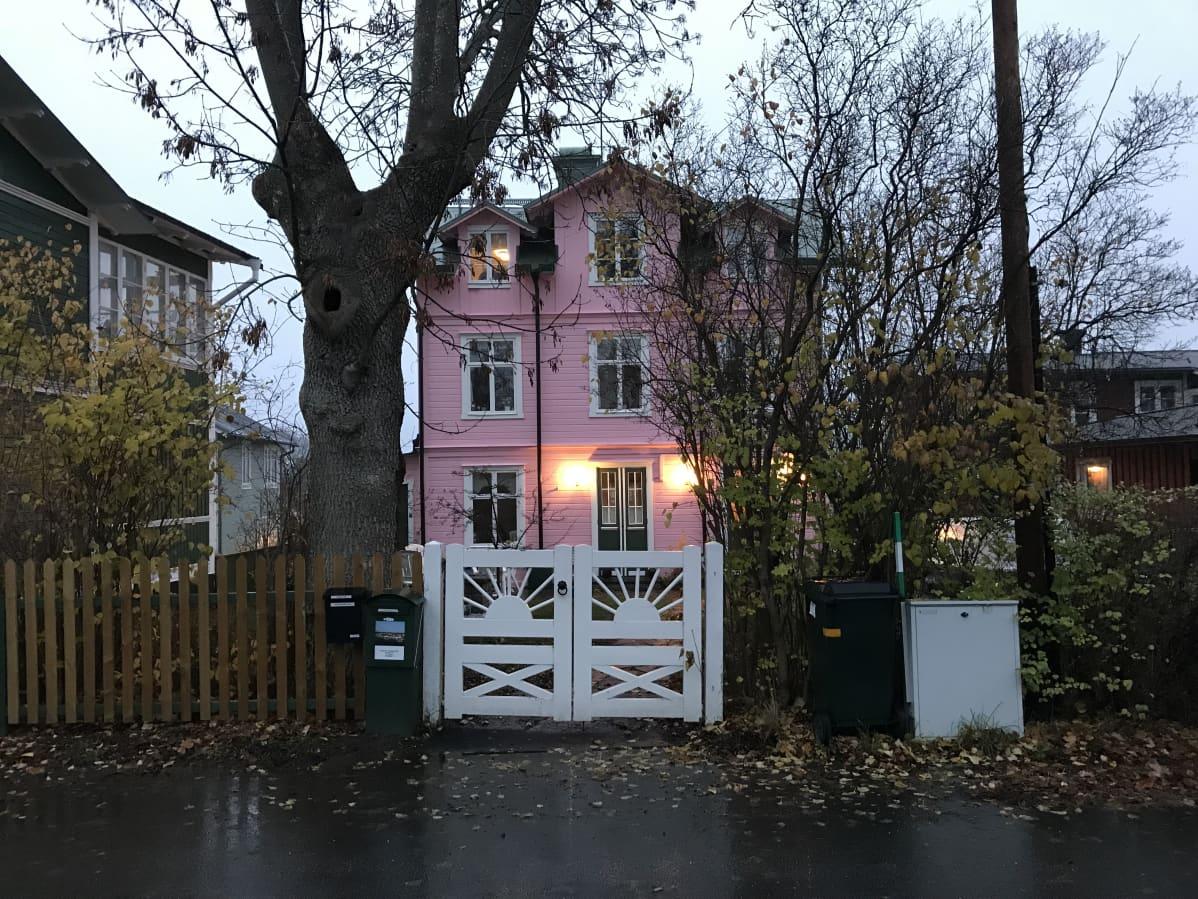 Rosa trähus i tre våningar med vita portar. Kolmikerroksinen ja vaaleanpunainen puutalo valtavan puun katveessa. Talon pihan portti on maalattu valkoiseksi.