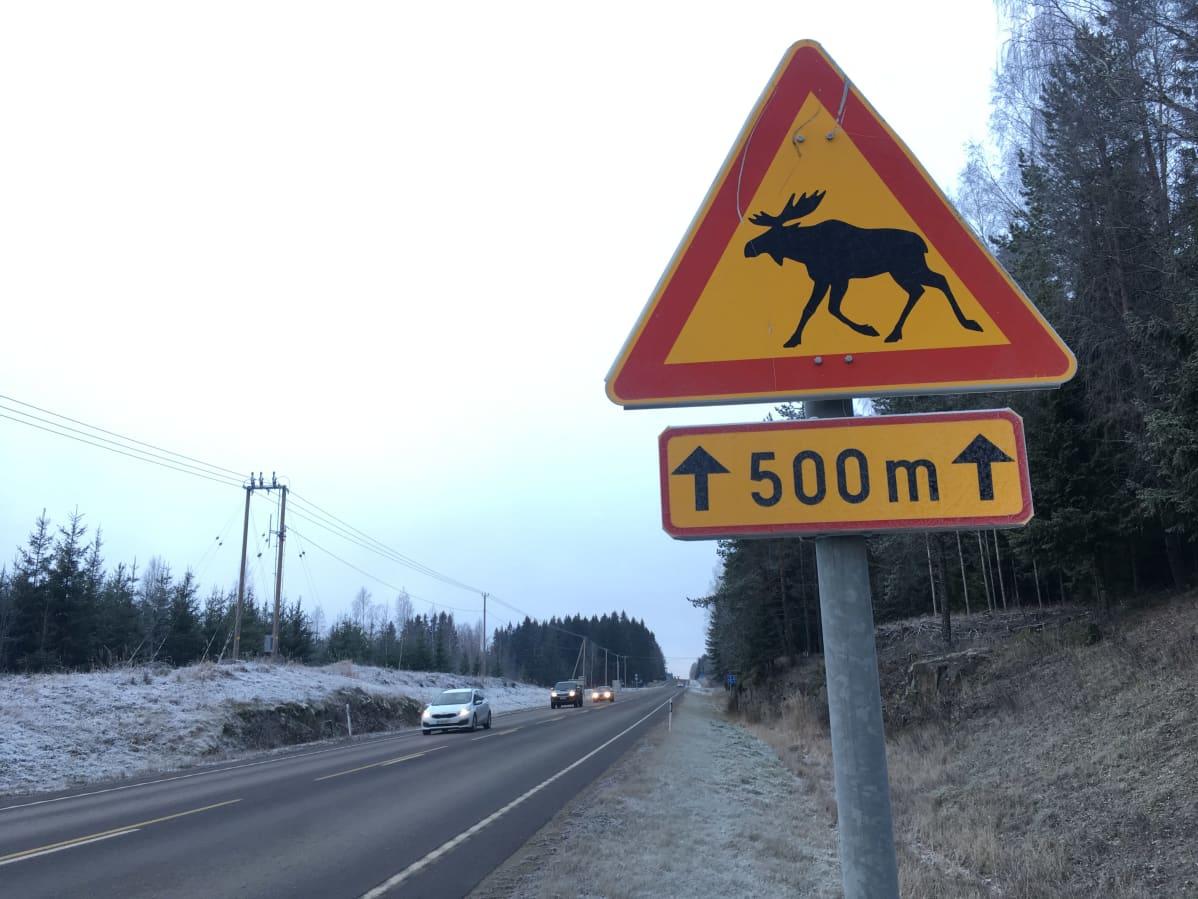 Hirvistä varoittava liikennemerkki valtatie 23:lla Kankaanpäässä.