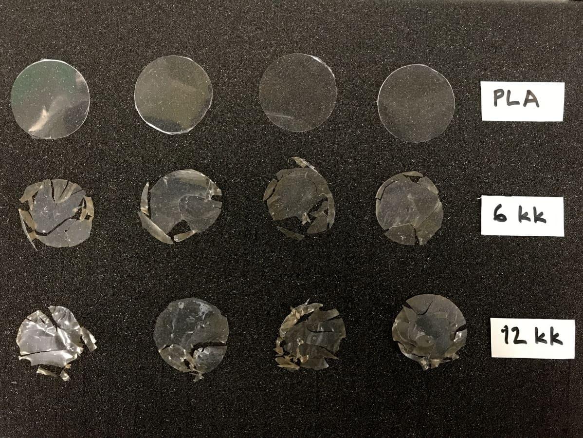 Kuvassa biopohjainen muovi polyaktidi (PLA) oltuaan 6 ja 12 kk meressä
