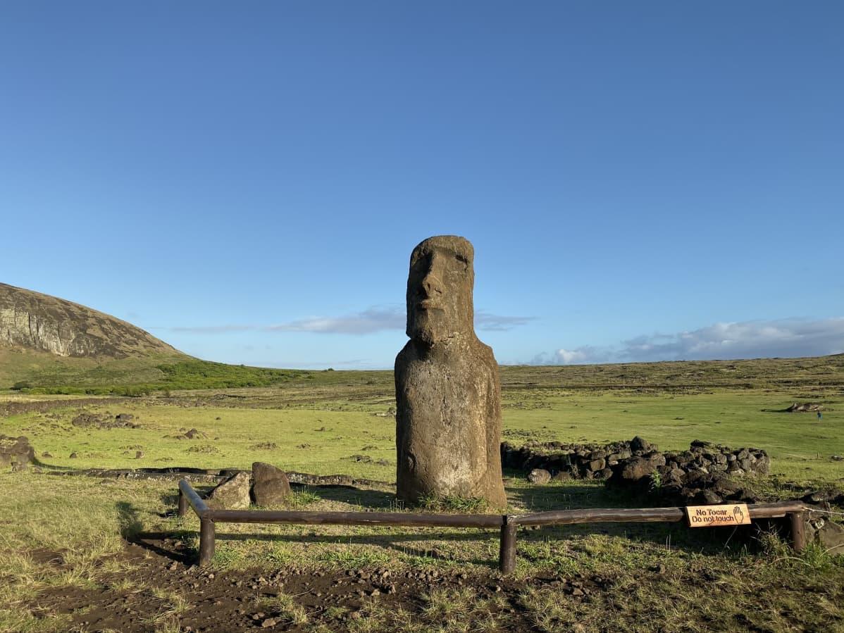 Moai-patsas.