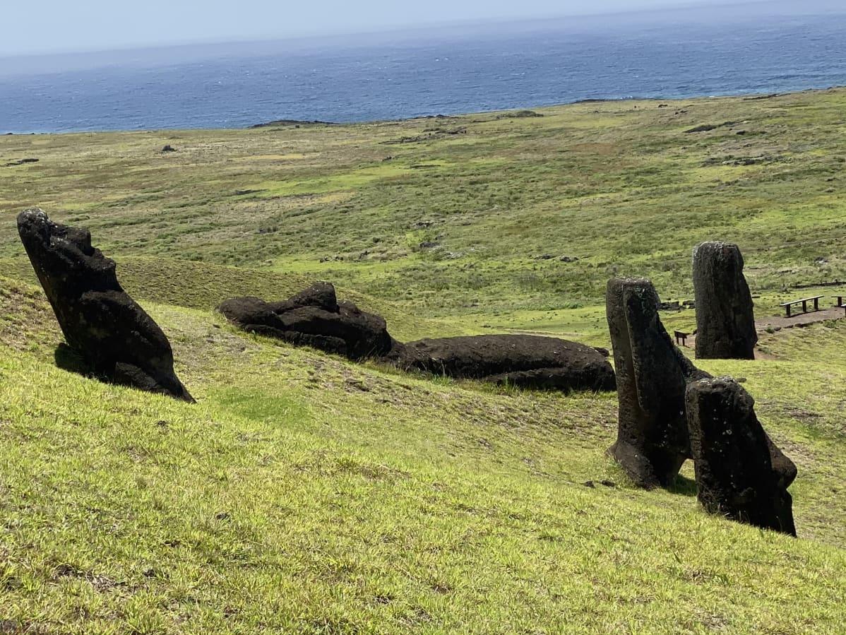 Moai-patsaita, taustalla meri.