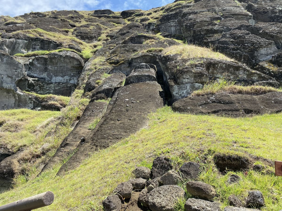 Maassa makaavia moai-patsaita.