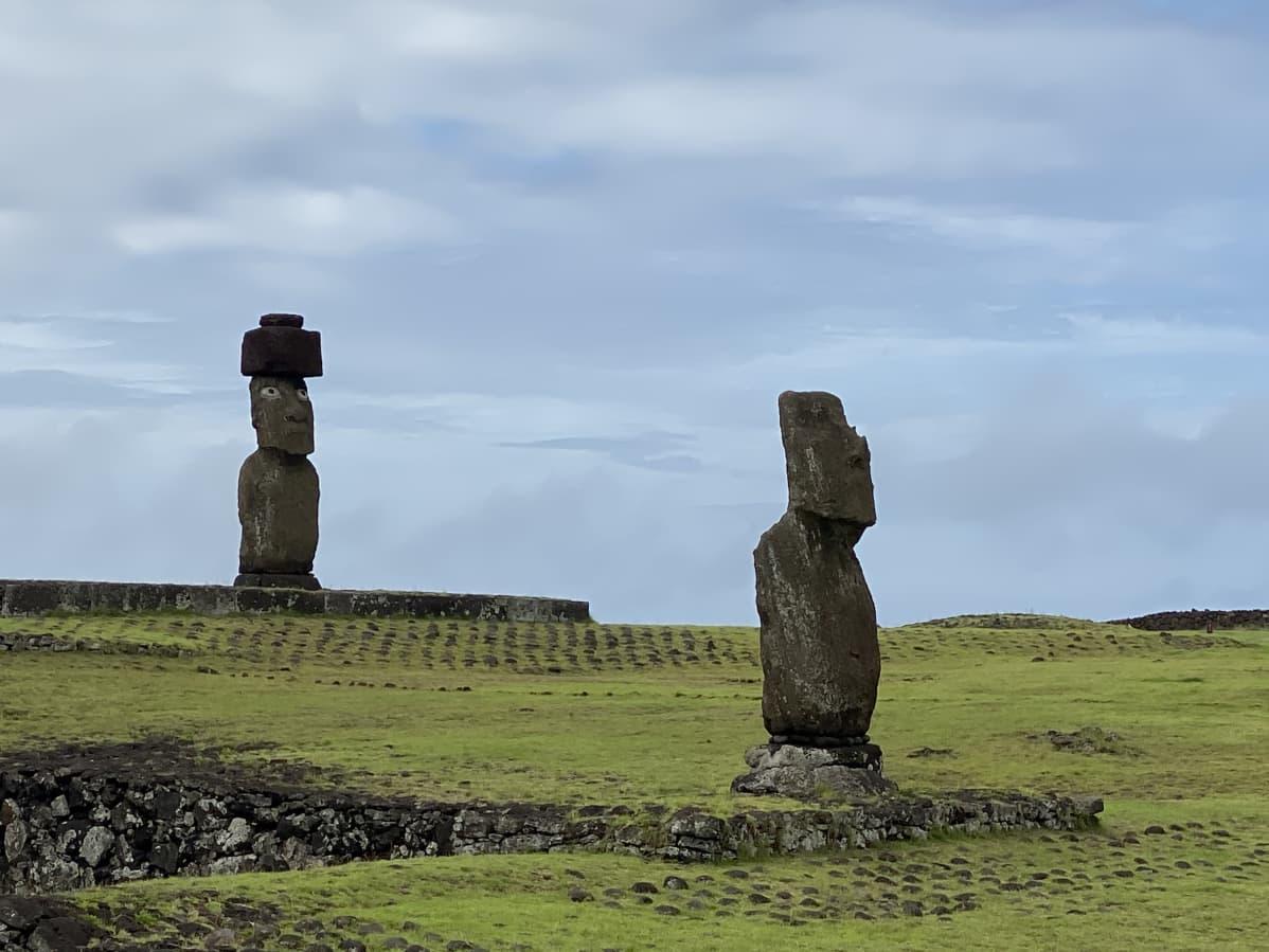 Moai-patsaita vihreällä niityllä.