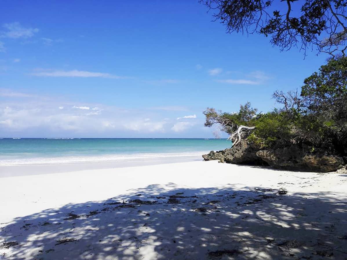 Valkoinen hiekkaranta meri siintää taustalla.