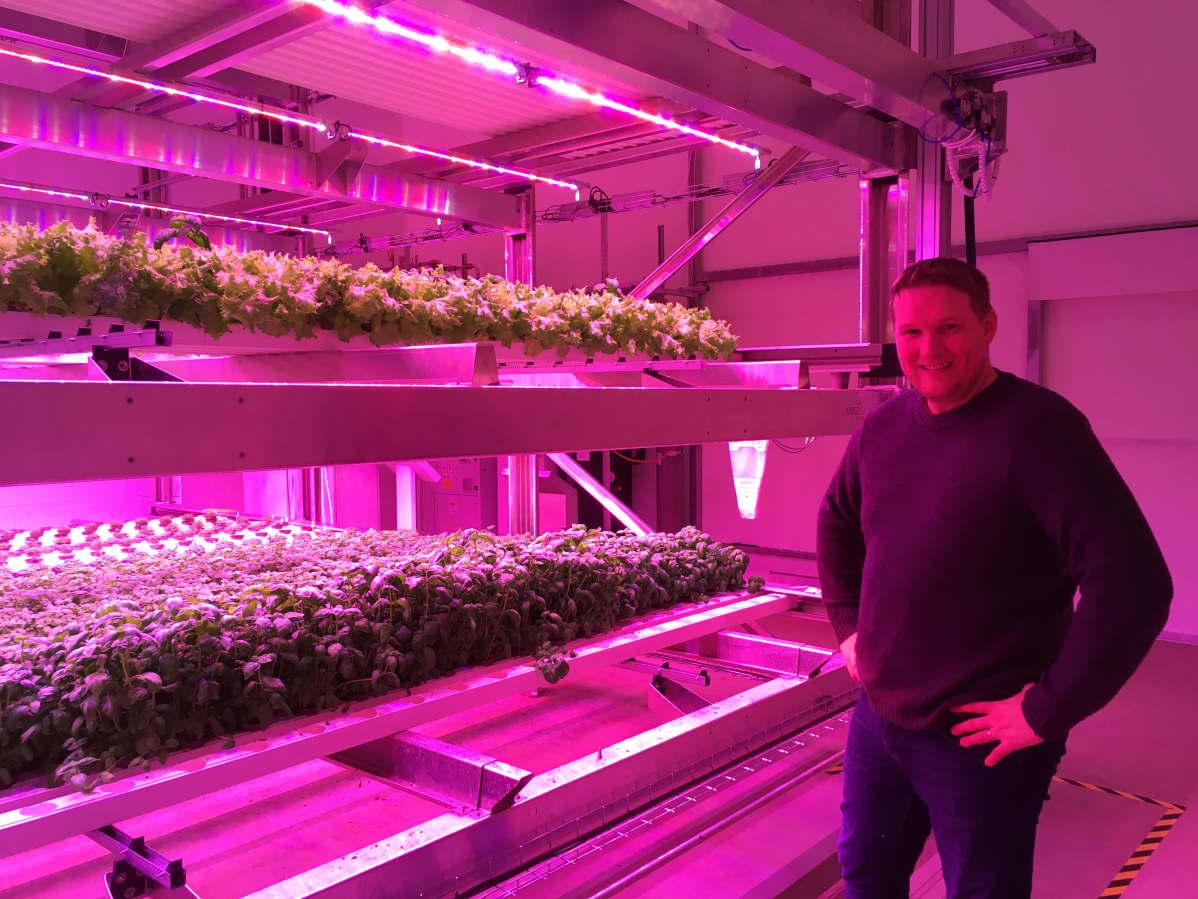 Netled Oy:n toimitusjohtaja esittelee vertikaaliviljelyä Pirkkalassa