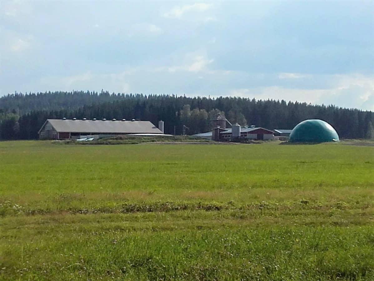 Tilakeskuksen yhteydessä oleva biokaasulaitos pellon reunassa