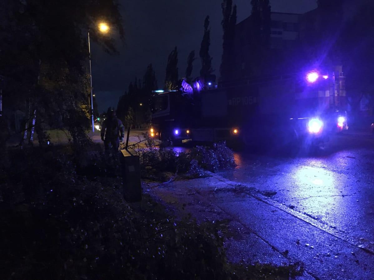 Pelastuslaitos korjaamassa tielle myrskyssä katkennutta puuta Vaasassa