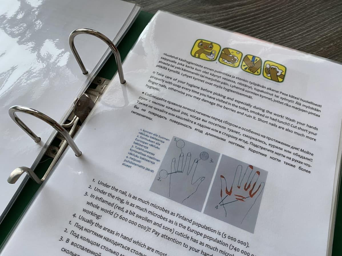 Infokansion sivulla neuvoja oikeaan käsienpesuun.