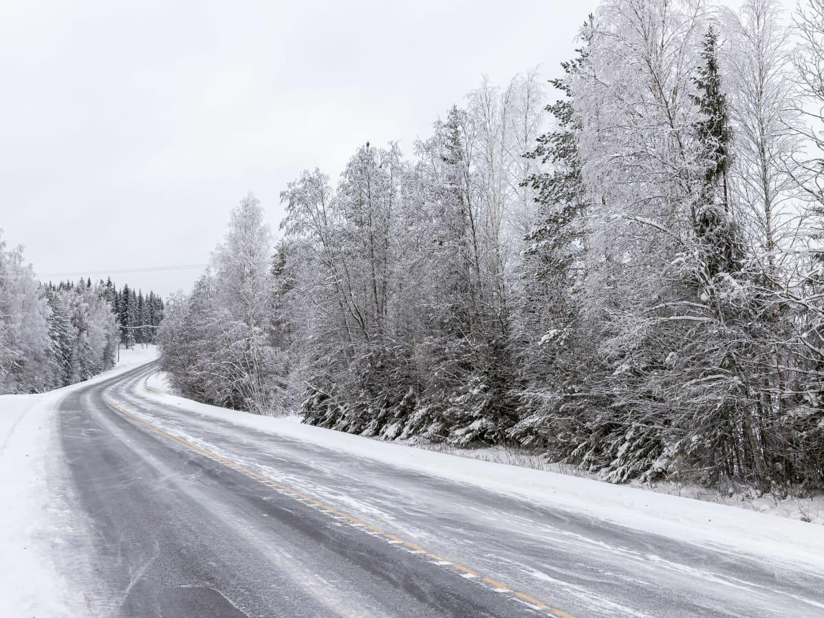 Raivaamaton tienvarsi valtatie kolmellatoista Kangasniemellä.