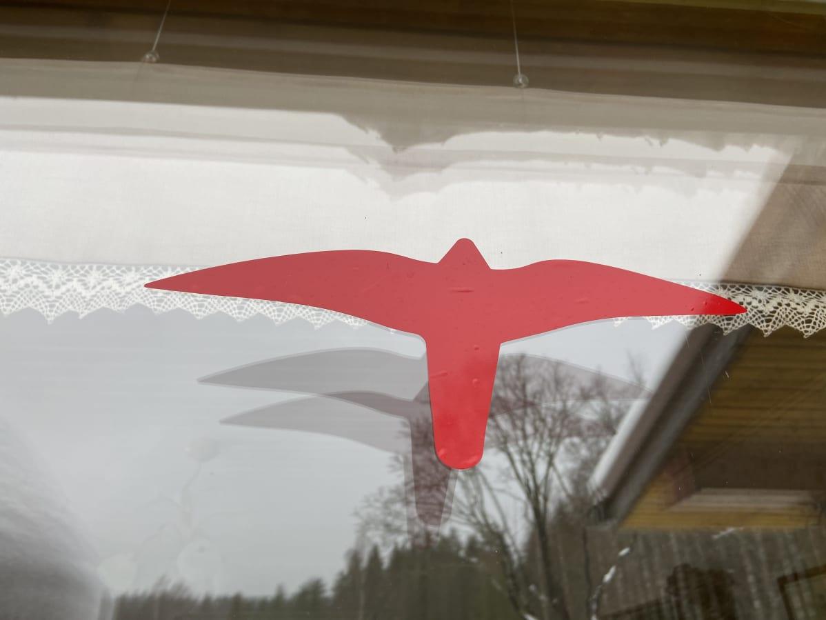 Ikkunan ulkopinnassa punainen haukkatarra