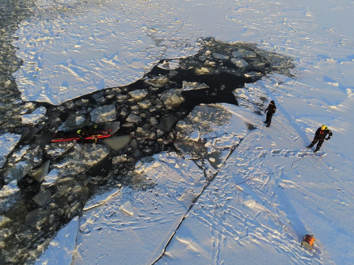 Meripelastusharjoitus, jäihin pudonnut jäälohkareidenkeskellä vedessä.