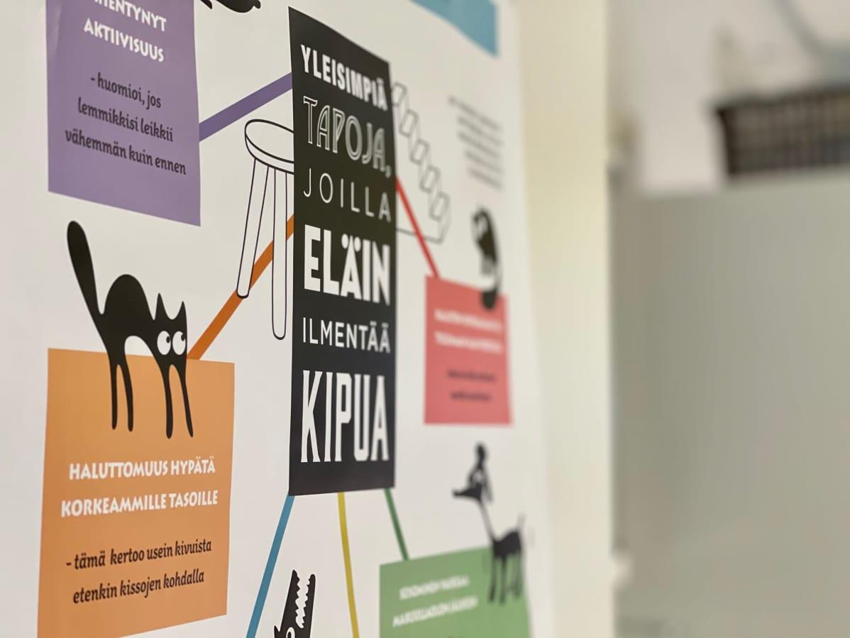 Seinällä on juliste, jossa kerrotaan miten eläin näyttää, jos sillä on kipuja.