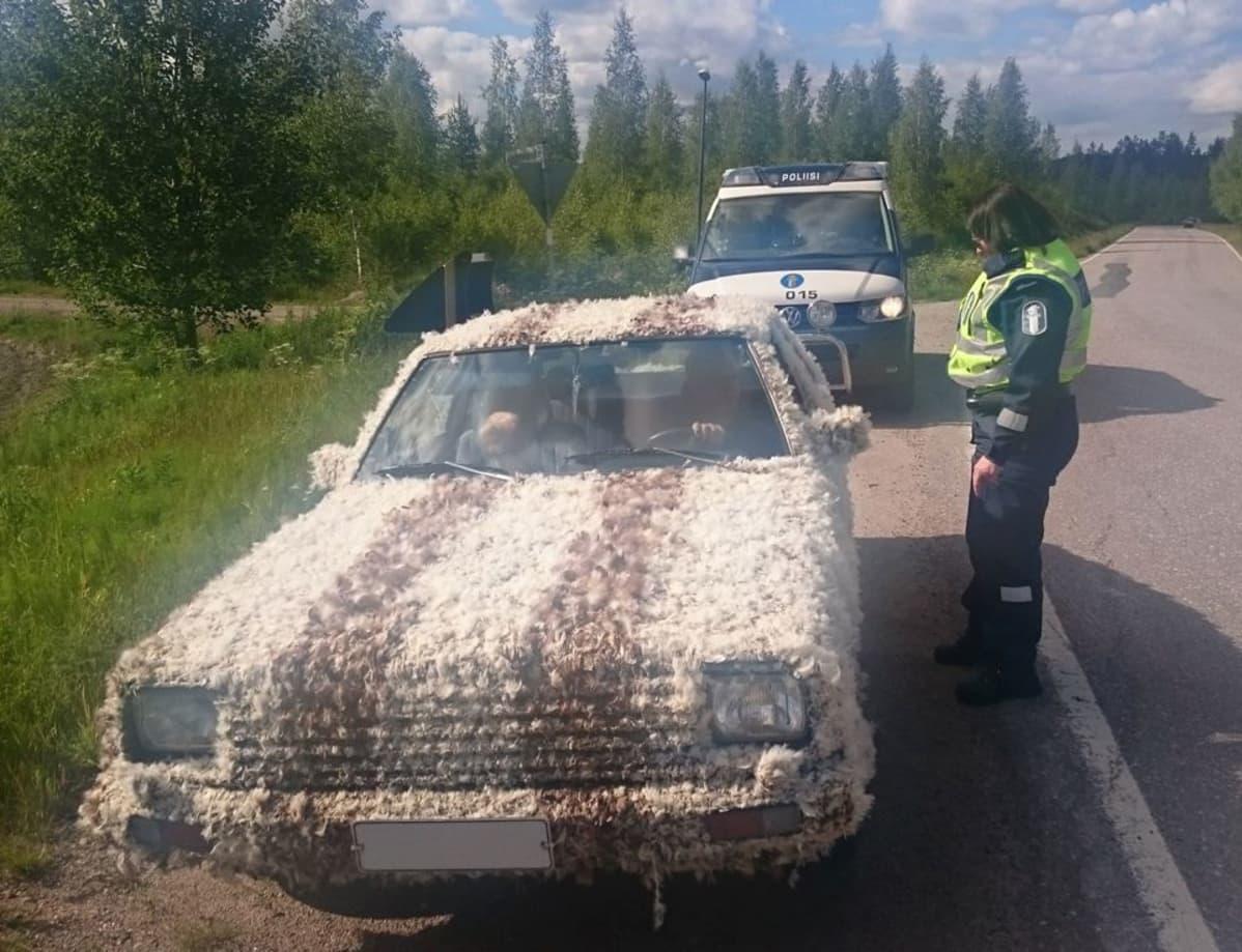 Poliisi jäi ihmettemään höyhenautoa