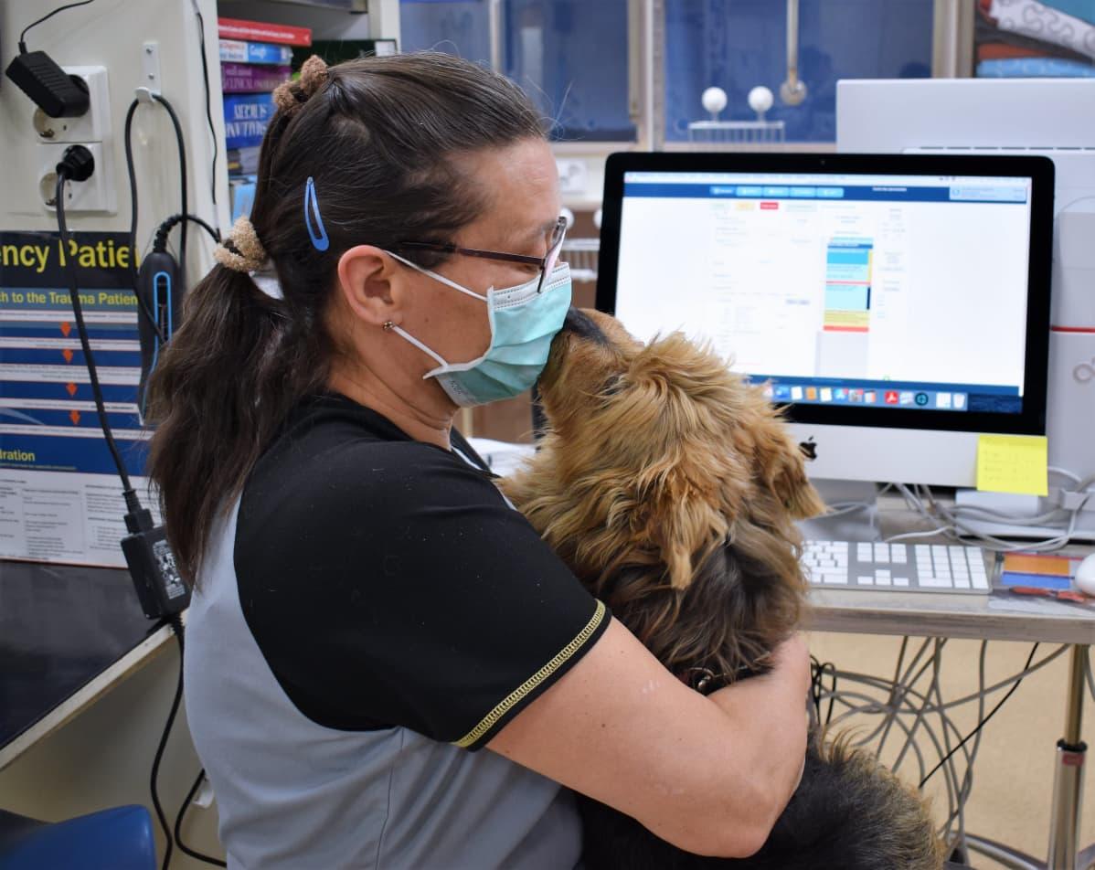 Eläinlääkäri Eva Einola-Koponen hellii sylissään koirapotilasta.
