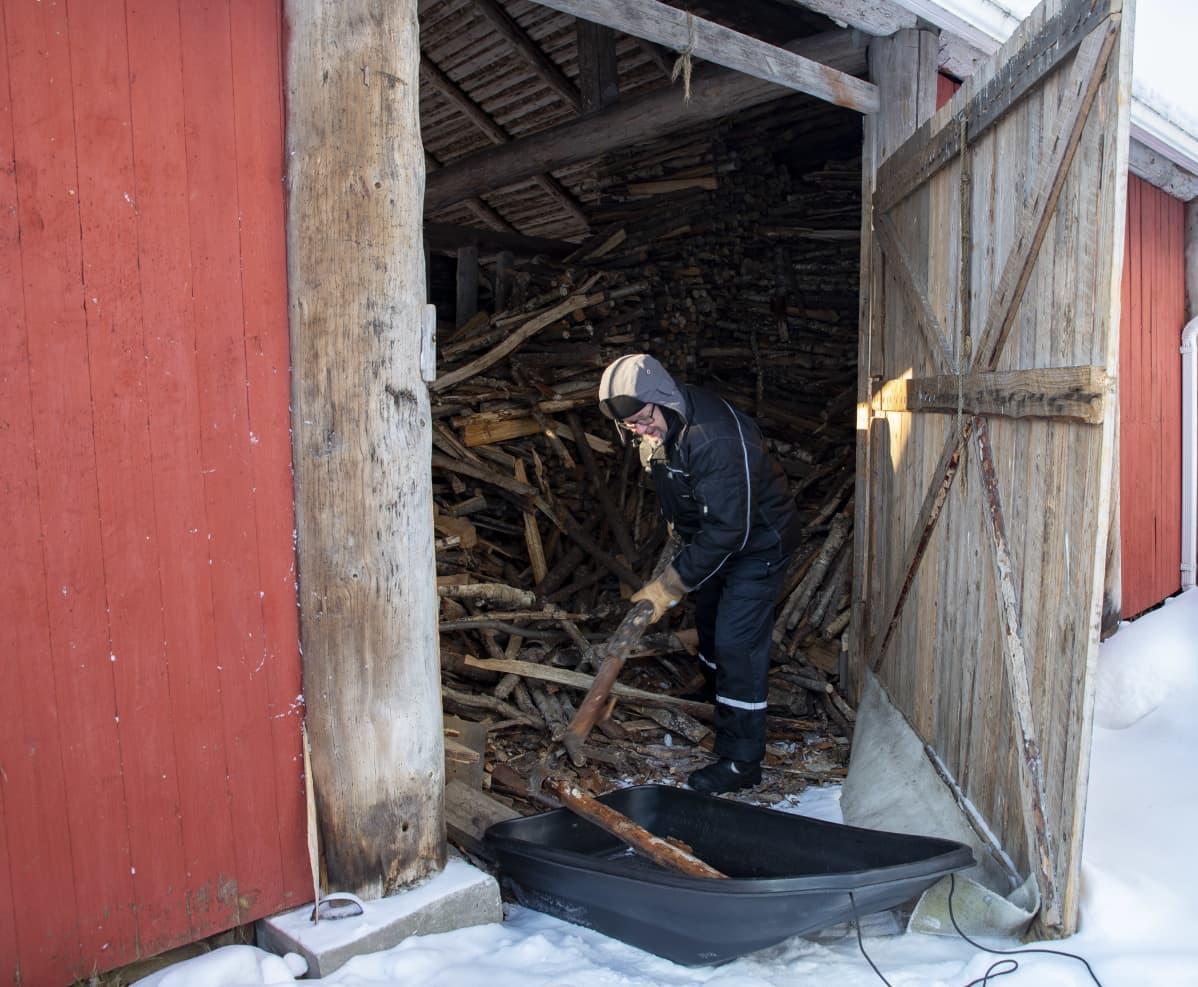 Timo Ruuska tekemässä polttopuita.
