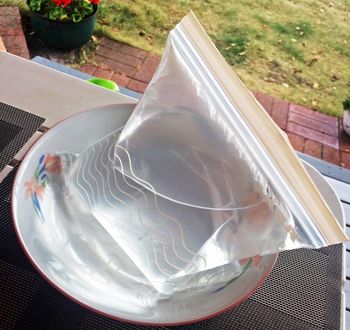 Vesipussi katonrajassa. Riitta Piironen testasi Espanjasta oppimaansa niksiä ampiaisten häätöön. Yksinkertaisuudessaan muovipussiin laitetaan vettä ja koko komeus aurinkoon. Piirosen yllätykseksi niksi tuntui toimivan.