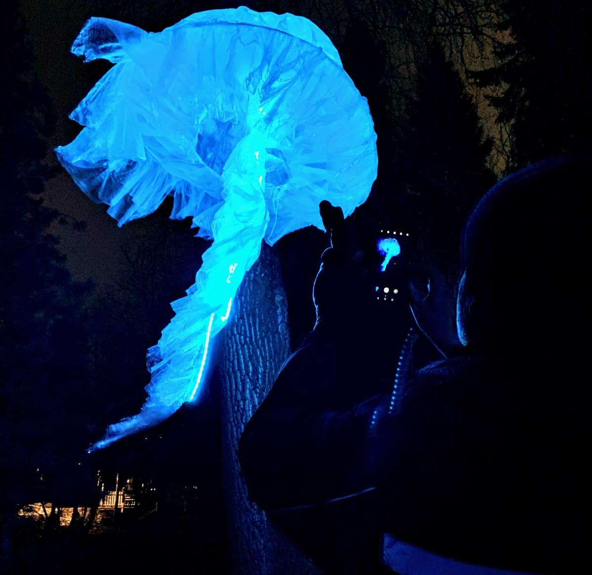 Magdalena Radziszewskan toteuttama Jellyfish-valoteos Oulun Lumo-taidefestivaaleilla marraskuussa 2019.