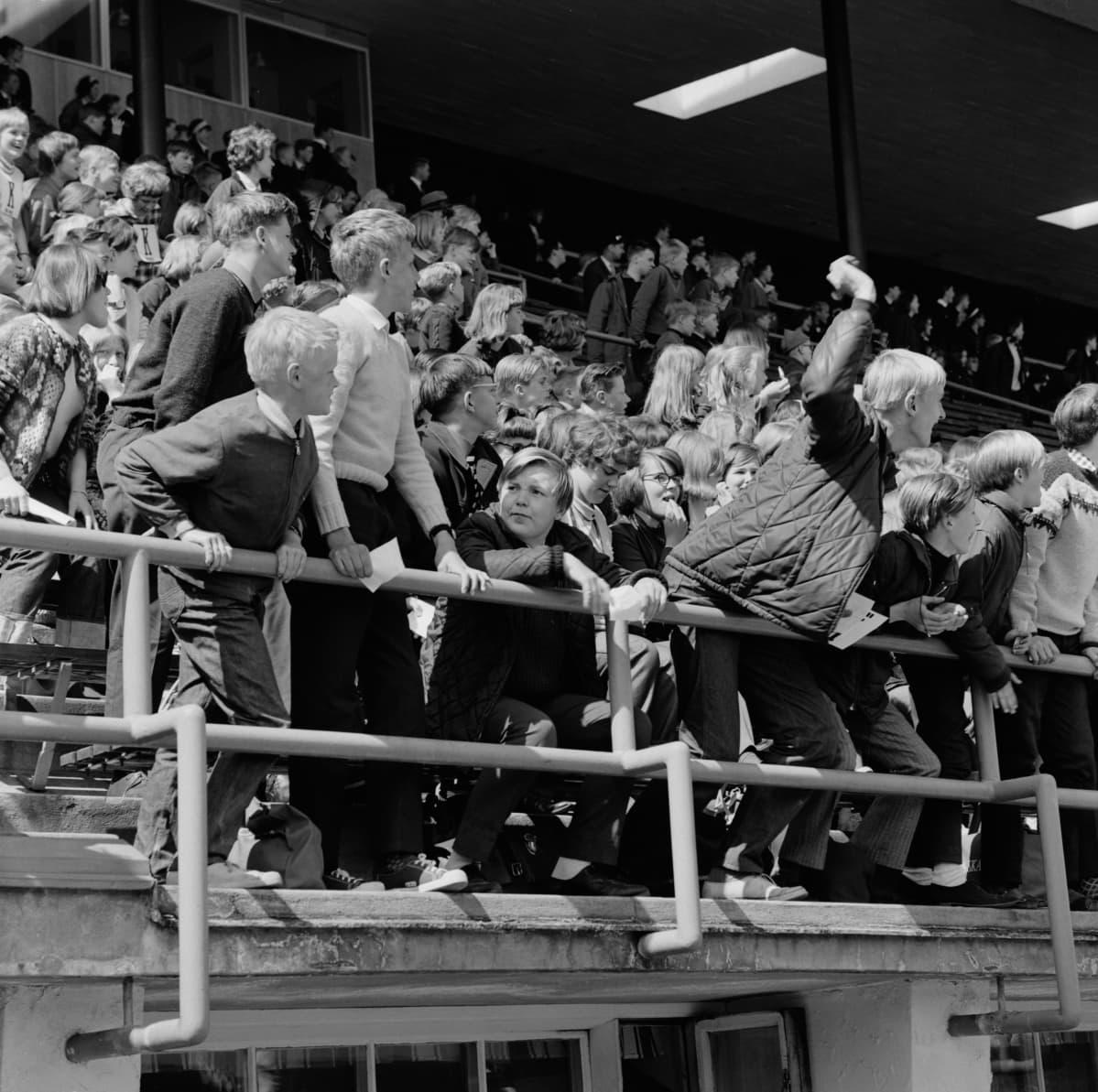 Yleisöä koululaisten viestijuoksukilpialussa Olympiastadionilla vuonna 1955.