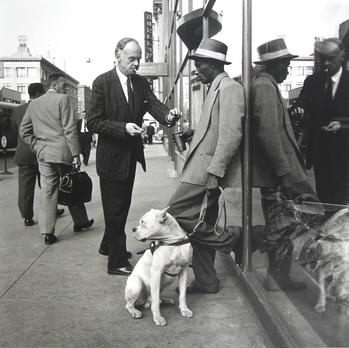 Kaksi miestä jä koira kadulla.