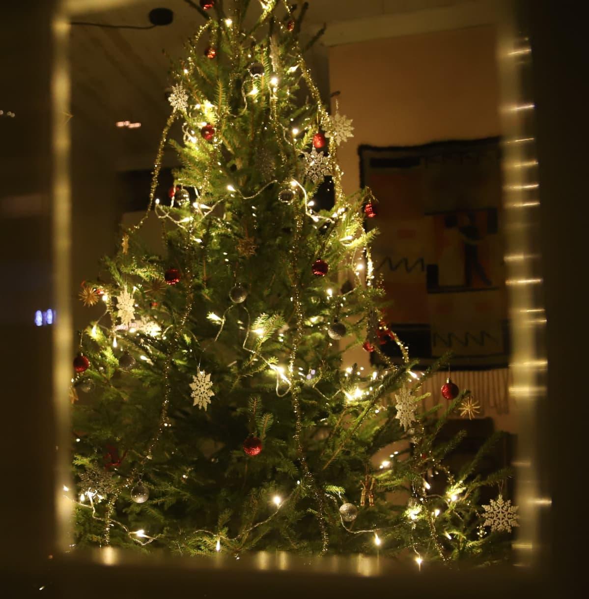 joulukuusi ikkunassa