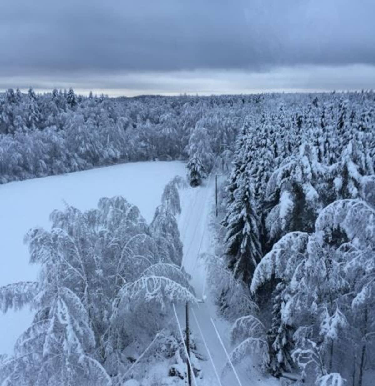 Luminen sähkölinja