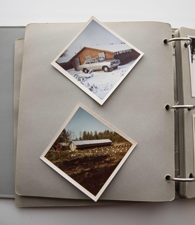 Turkistarhaajien valokuva-albumi.