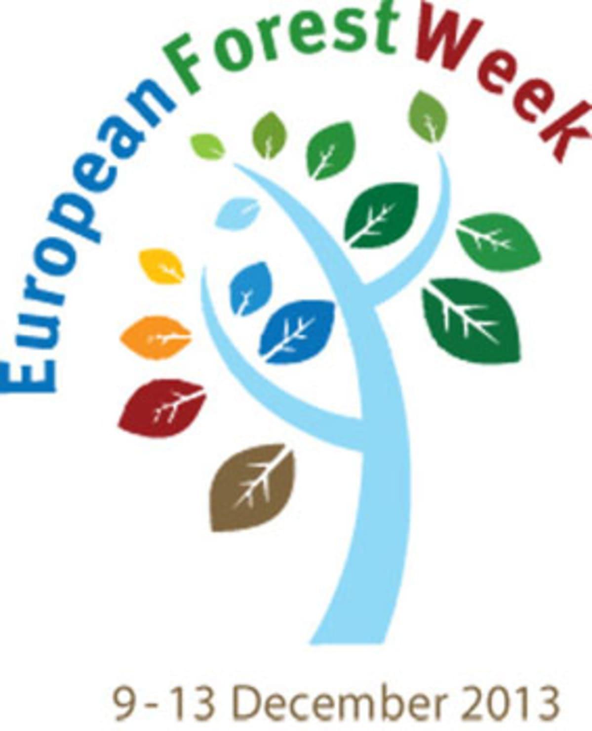 Euroopan metsäviikko 2013 logo