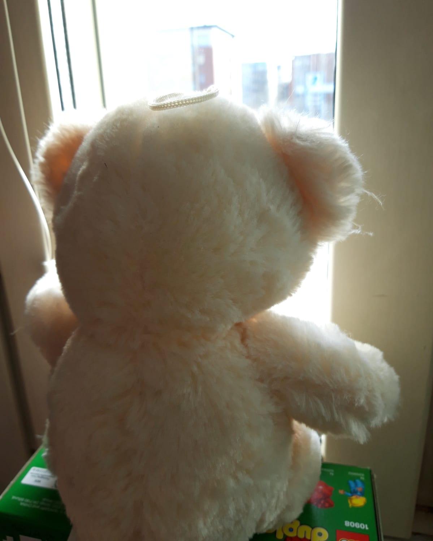 Nalle istuu ikkunanlaudalla.