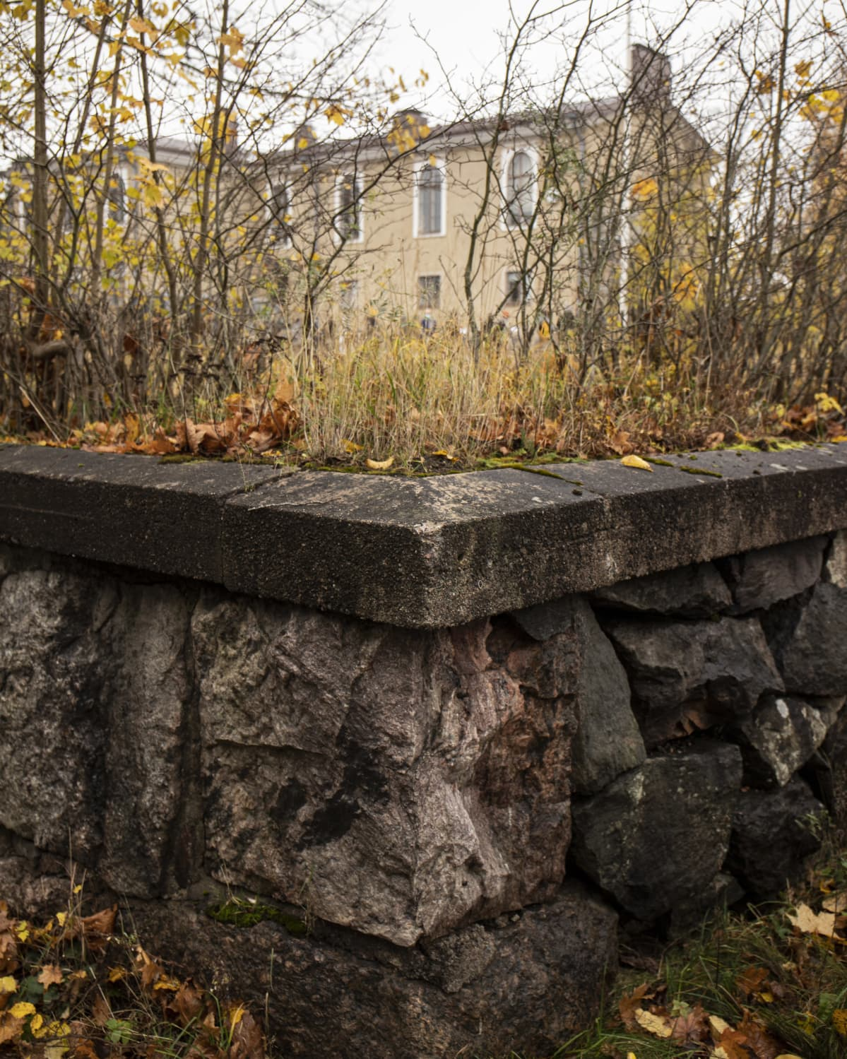 Haagan vanhan kansakoulun kivimuuri.