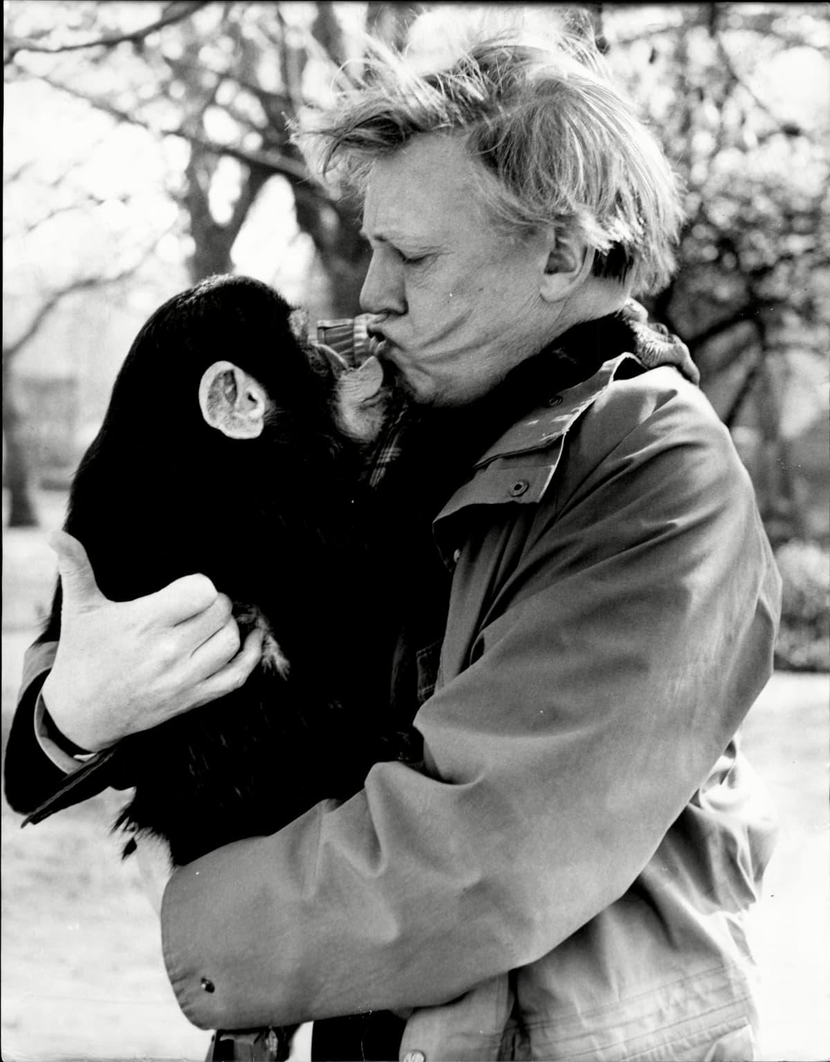 David Attenborough pitää sylissään simpanssia Lontoon eläintarhassa vuonna 1987.