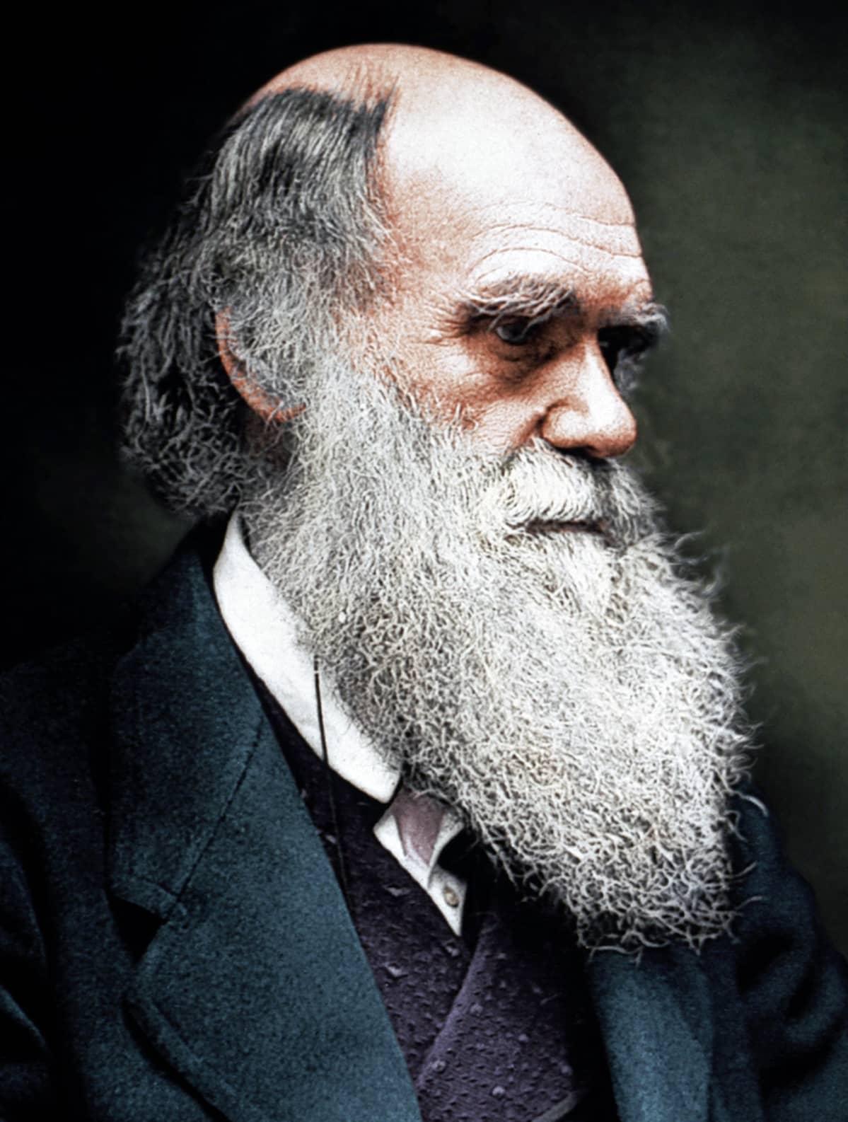 Luonnontieteilijä Charles Darwin (1809-1882)